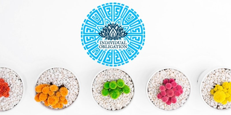 Individual Obligation Logo header with different colour plants