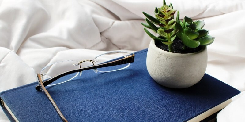 The best tools for bloggers website speed tools header image of blue notepad and potted plant